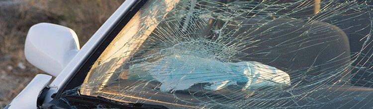 תמונת נושא עבור פיצוי בגין נכות תפקודית עקב תאונת דרכים