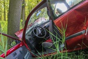 הפניקס תפצה בגין תאונת דרכים עצמית